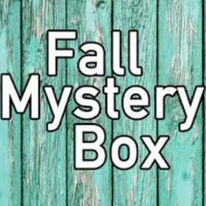 WINTER FALL MYSTERY BOX or RESELLERS BOX